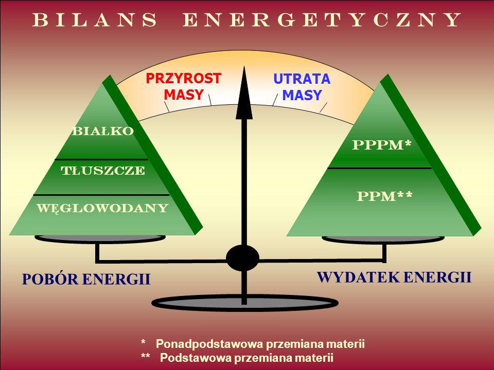 B I L A N S E N E R G E T Y C Z N Y WYDATEK ENERGII POBÓR ENERGII