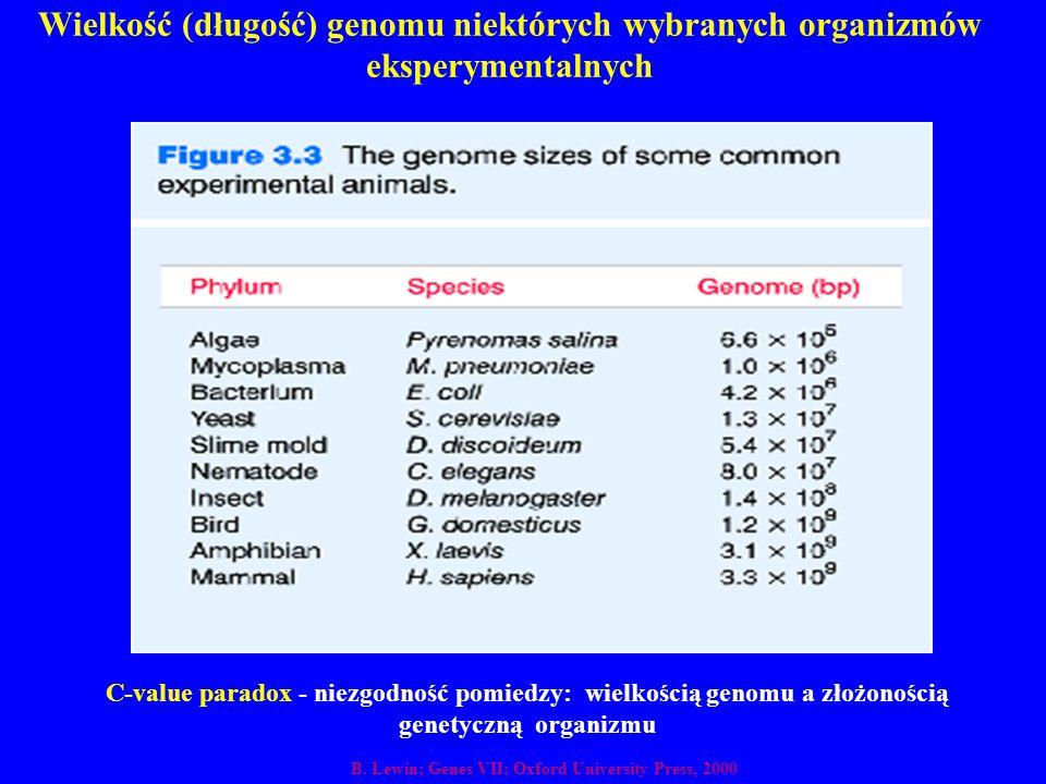 Wielkość (długość) genomu niektórych wybranych organizmów eksperymentalnych