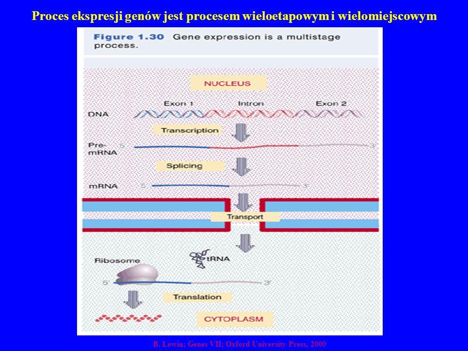 Proces ekspresji genów jest procesem wieloetapowym i wielomiejscowym