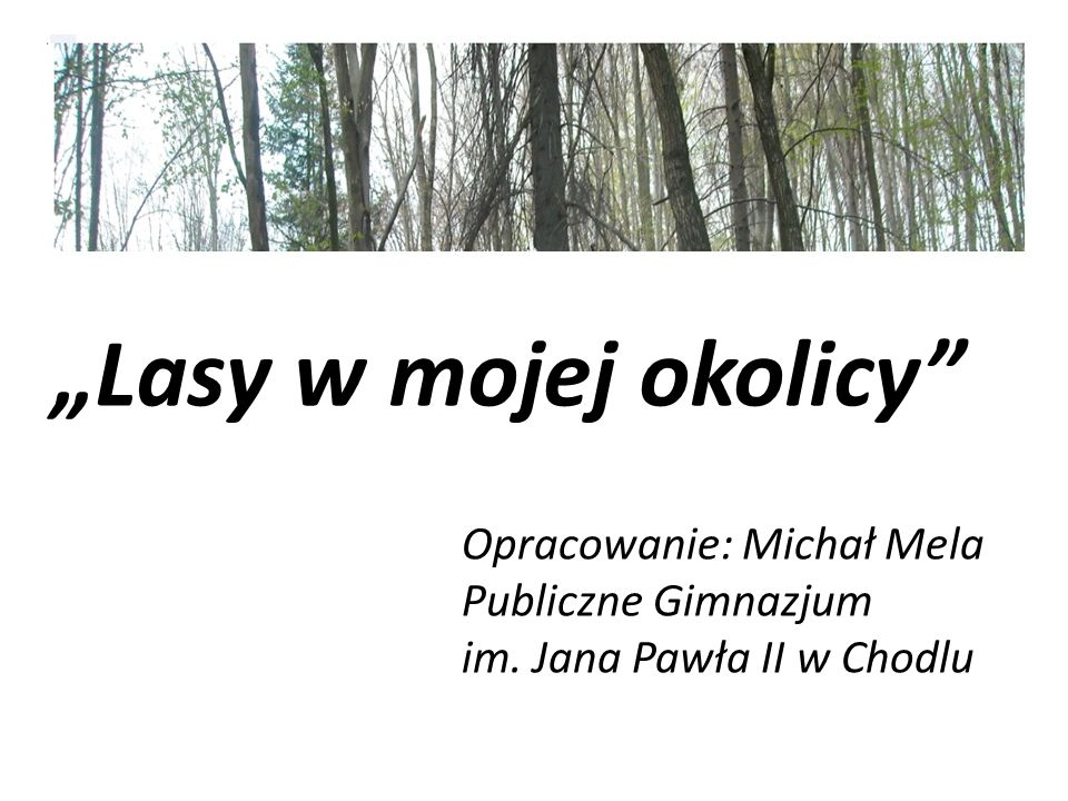 """""""Lasy w mojej okolicy Opracowanie: Michał Mela Publiczne Gimnazjum"""