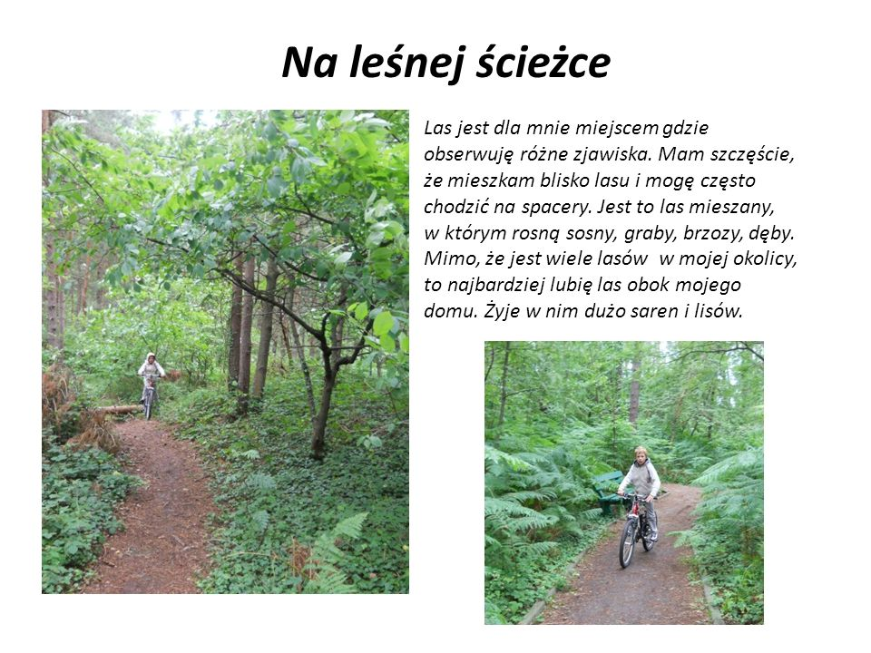 Na leśnej ścieżce