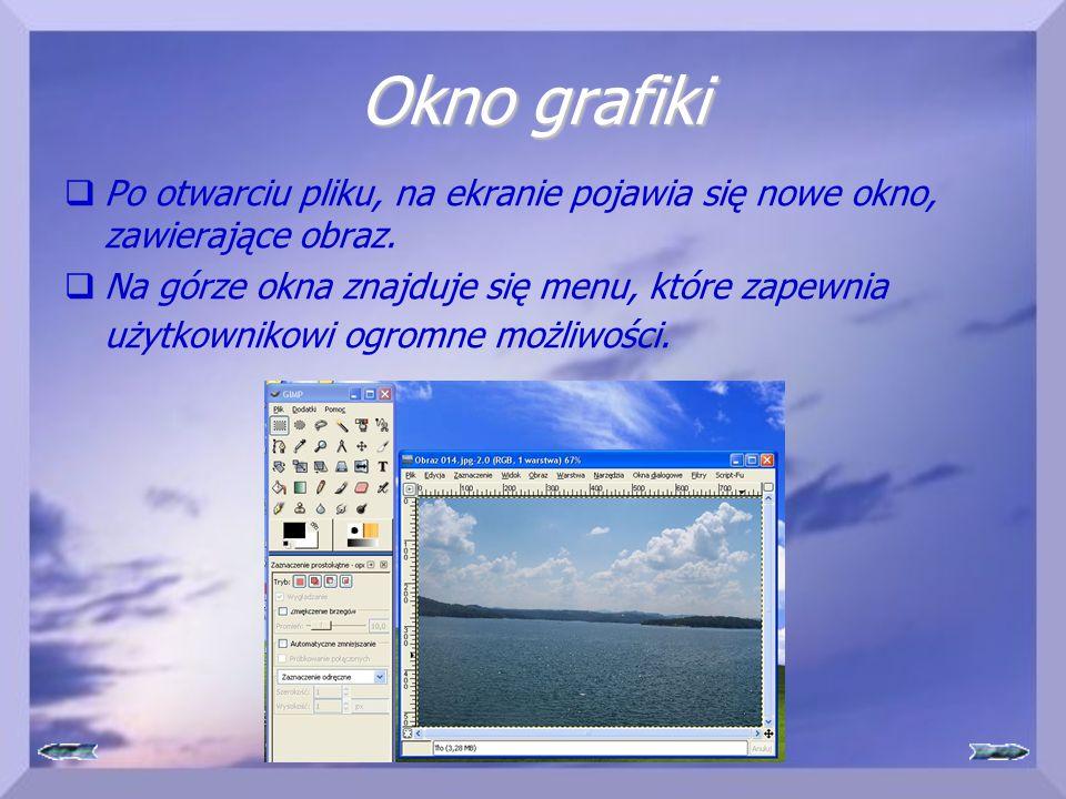 Okno grafiki Po otwarciu pliku, na ekranie pojawia się nowe okno, zawierające obraz.