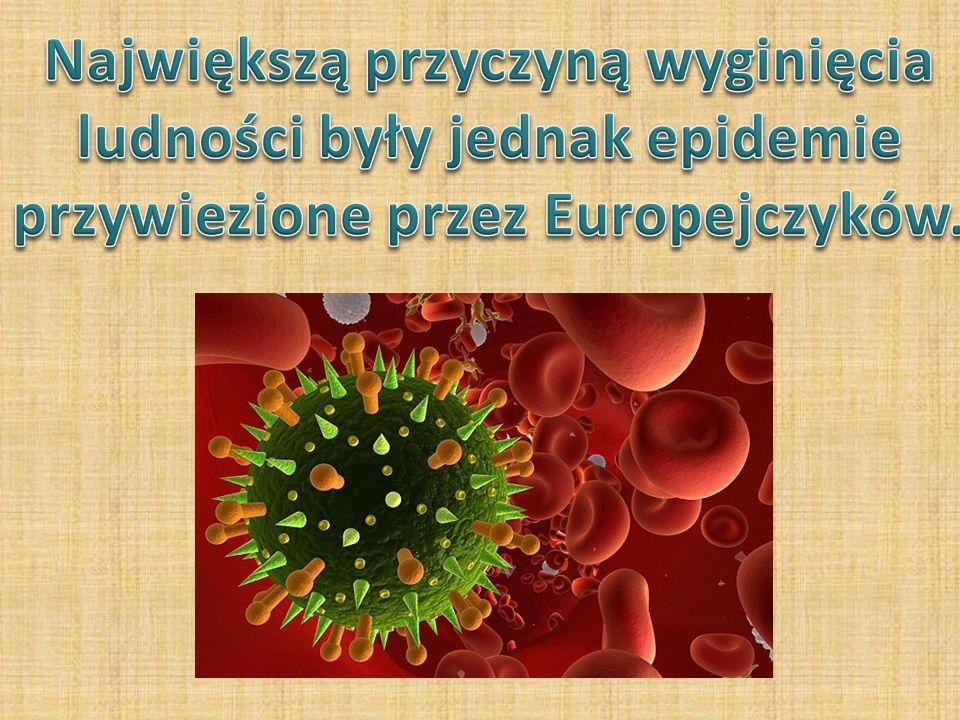 Największą przyczyną wyginięcia ludności były jednak epidemie