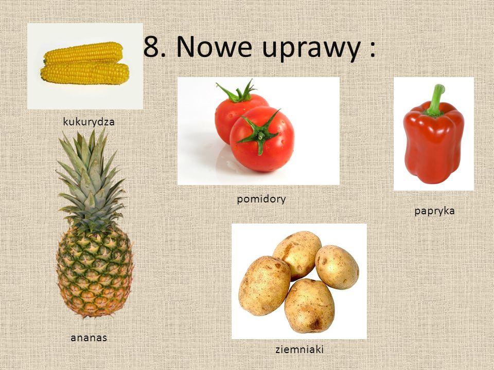 8. Nowe uprawy : kukurydza pomidory papryka ananas ziemniaki