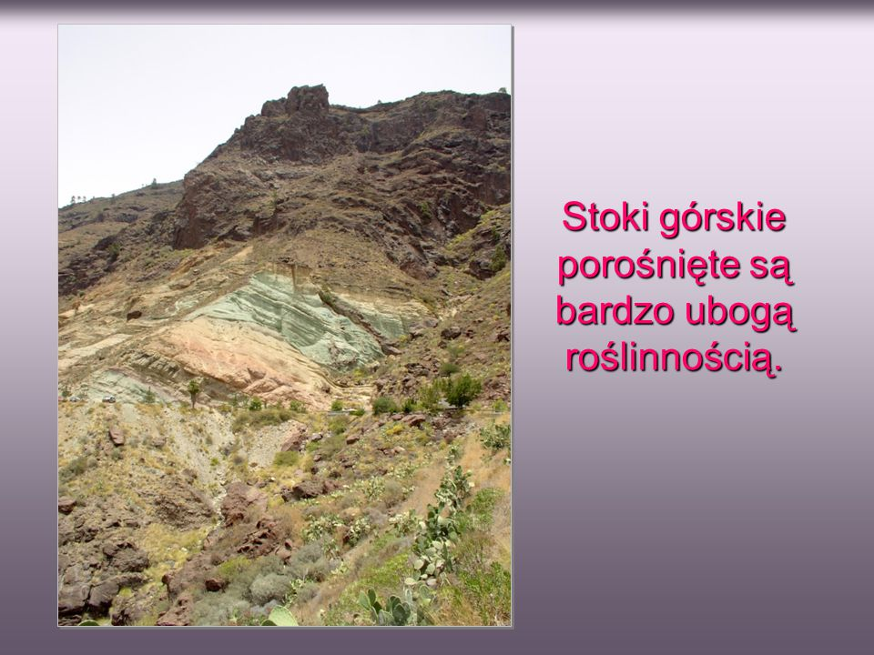 Stoki górskie porośnięte są bardzo ubogą roślinnością.