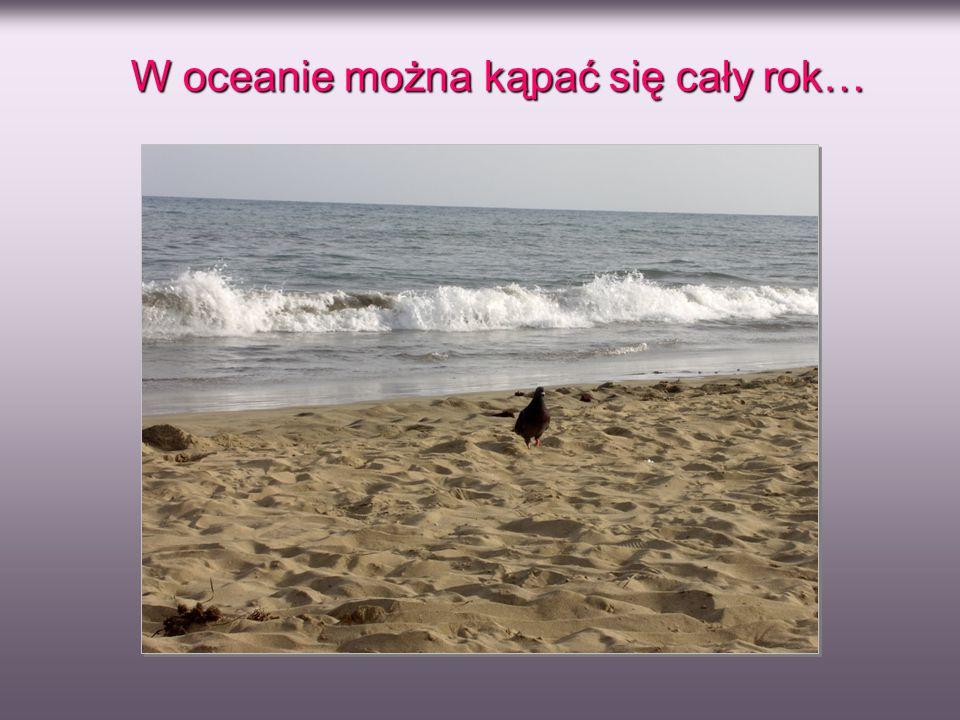 W oceanie można kąpać się cały rok…