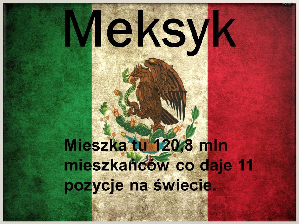 Meksyk Meksyk Mieszka tu 120,8 mln mieszkańców co daje 11 pozycje na świecie.