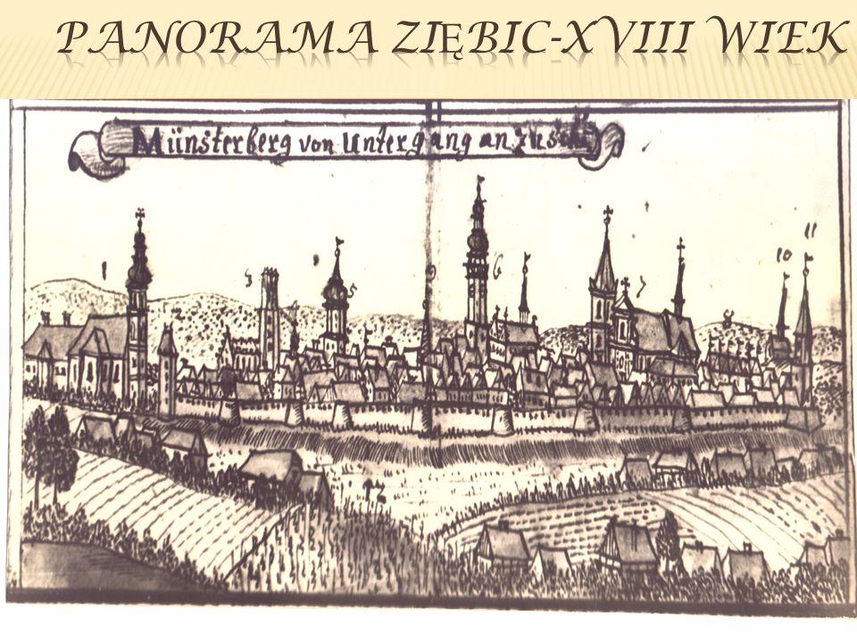 Panorama ziębic-XVIII wiek
