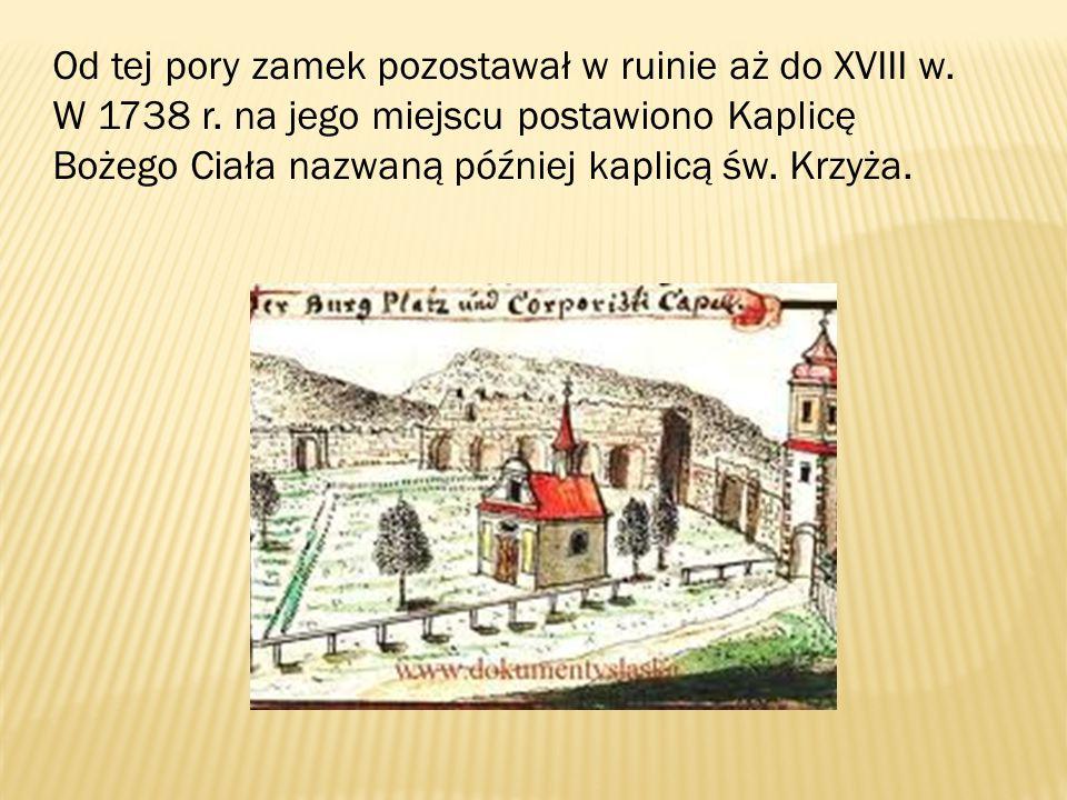 Od tej pory zamek pozostawał w ruinie aż do XVIII w. W 1738 r