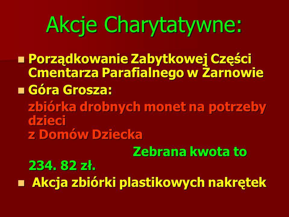 Akcje Charytatywne: Porządkowanie Zabytkowej Części Cmentarza Parafialnego w Żarnowie. Góra Grosza: