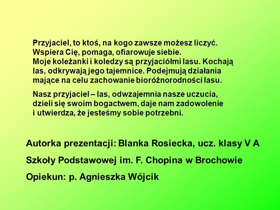 Autorka prezentacji: Blanka Rosiecka, ucz. klasy V A