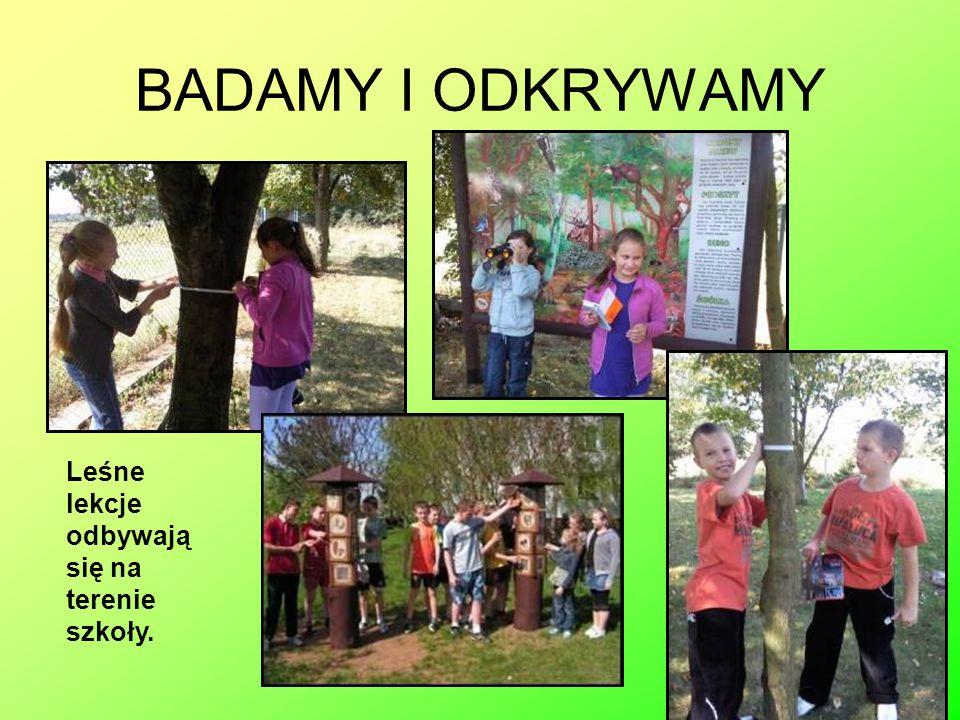 BADAMY I ODKRYWAMY Leśne lekcje odbywają się na terenie szkoły.