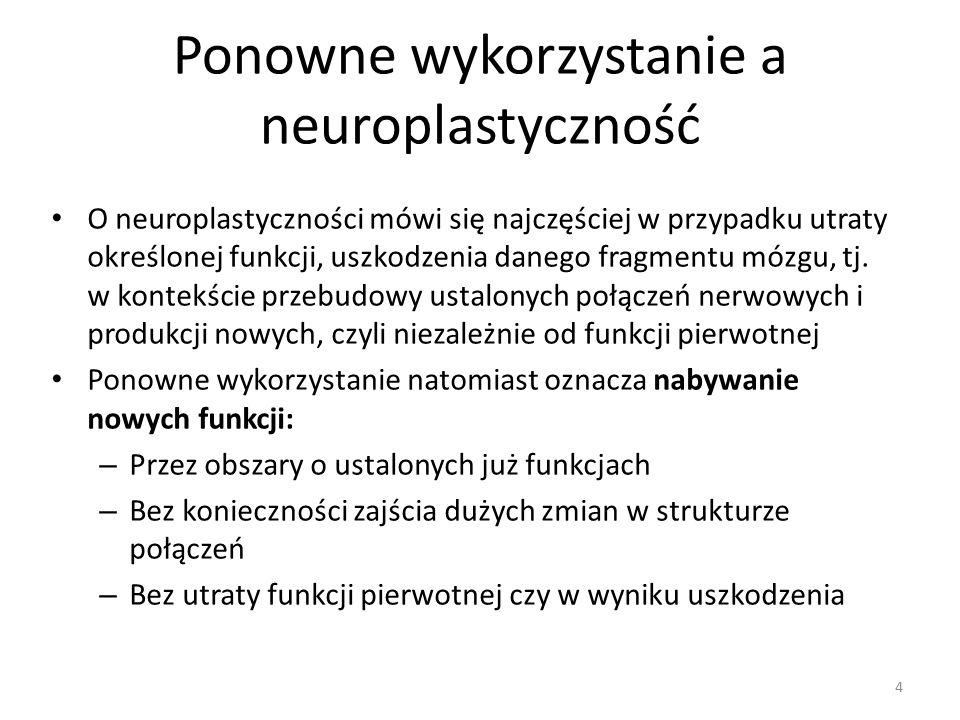 Ponowne wykorzystanie a neuroplastyczność