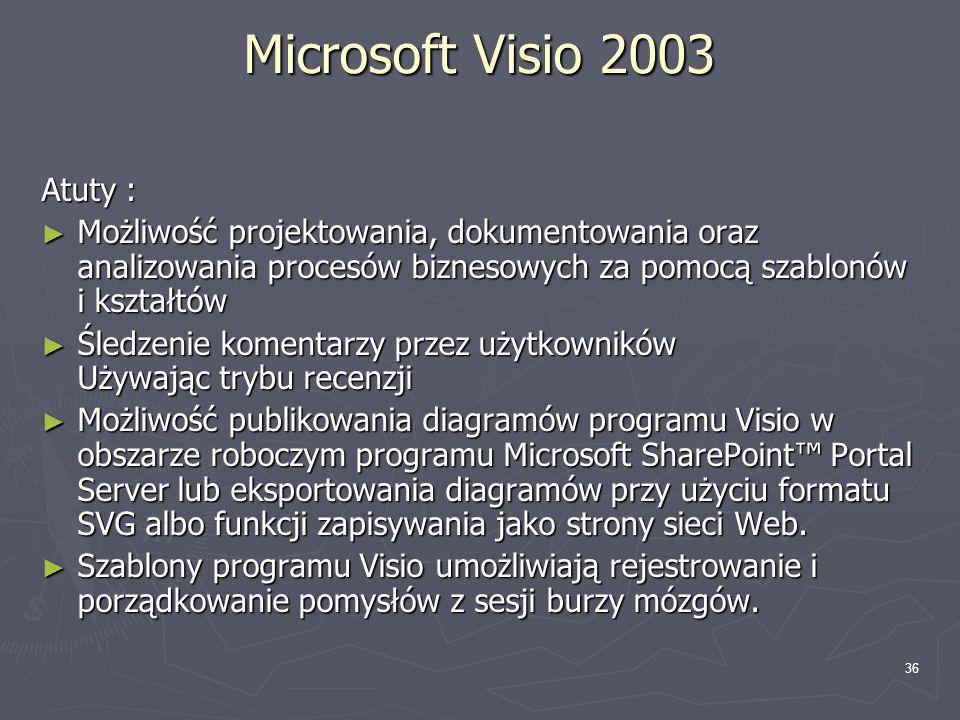 Microsoft Visio 2003 Atuty :