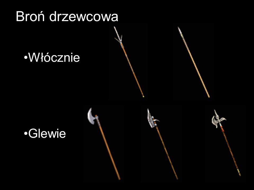 Broń drzewcowa Włócznie Glewie