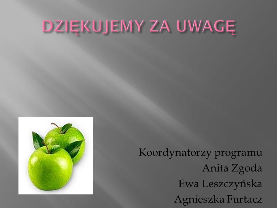 DZIĘKUJEMY ZA UWAGĘ Koordynatorzy programu Anita Zgoda Ewa Leszczyńska Agnieszka Furtacz