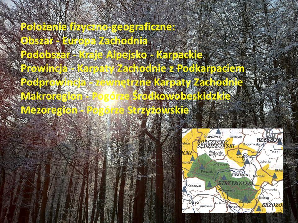 Położenie fizyczno-geograficzne: