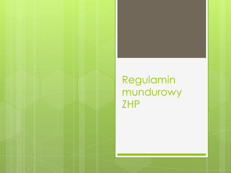 Regulamin mundurowy ZHP