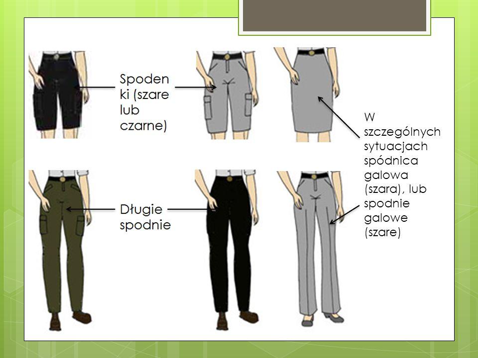 W szczególnych sytuacjach spódnica galowa (szara), lub spodnie galowe (szare)