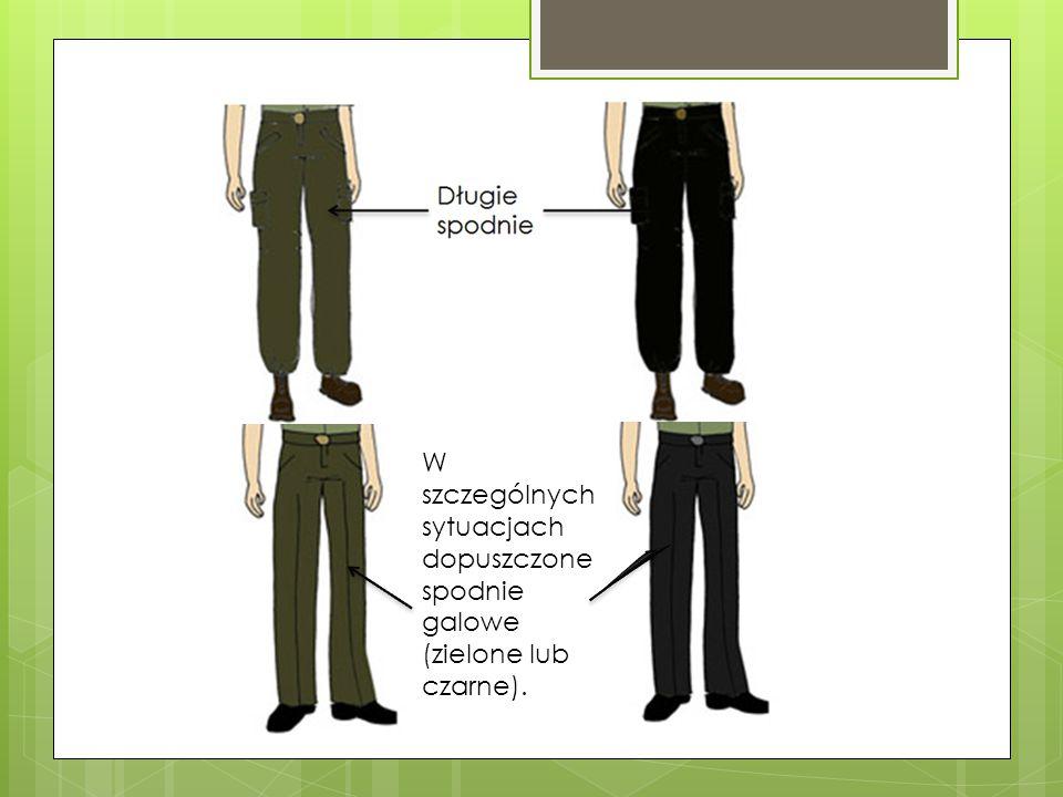 W szczególnych sytuacjach dopuszczone spodnie galowe (zielone lub czarne).