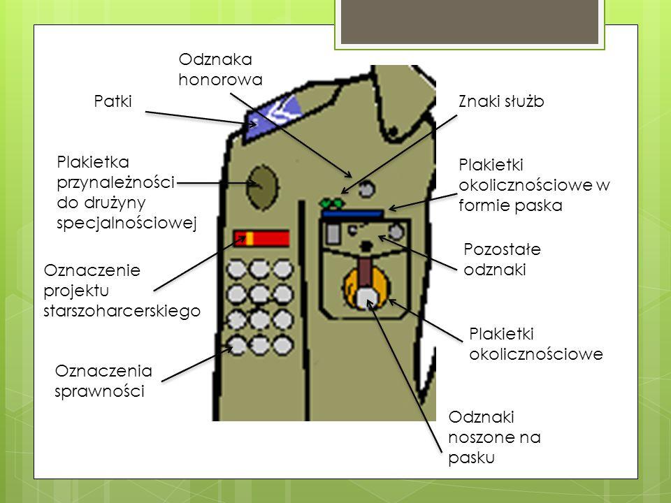Odznaka honorowa Patki. Znaki służb. Plakietka przynależności do drużyny specjalnościowej. Plakietki okolicznościowe w formie paska.