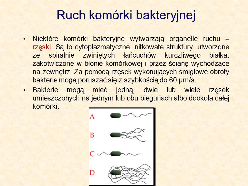 Ruch komórki bakteryjnej