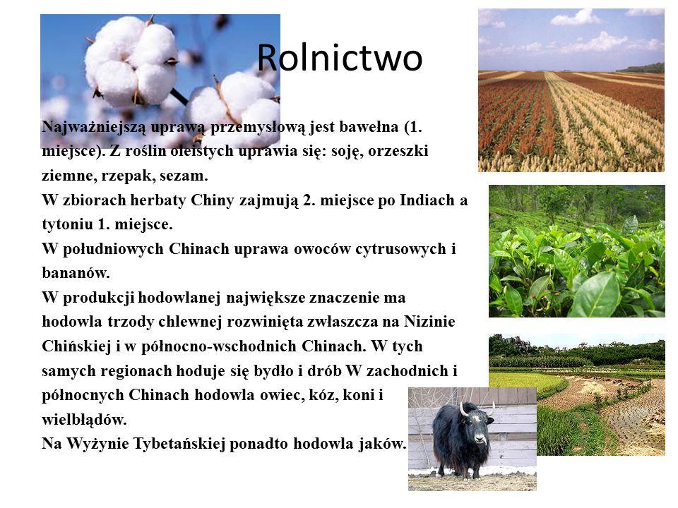 Rolnictwo Najważniejszą uprawą przemysłową jest bawełna (1. miejsce). Z roślin oleistych uprawia się: soję, orzeszki ziemne, rzepak, sezam.