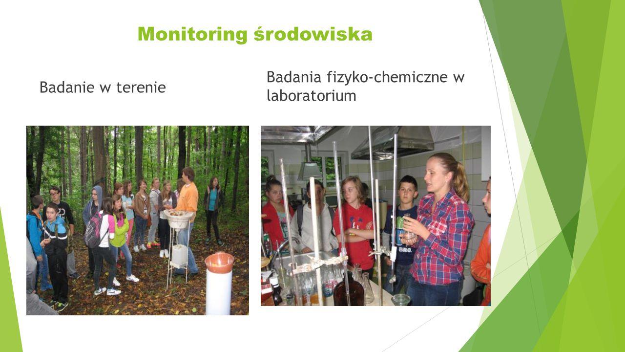 Monitoring środowiska