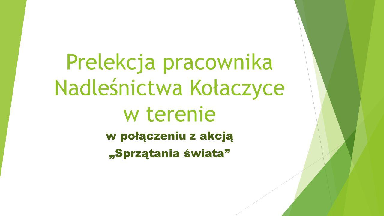 Prelekcja pracownika Nadleśnictwa Kołaczyce w terenie
