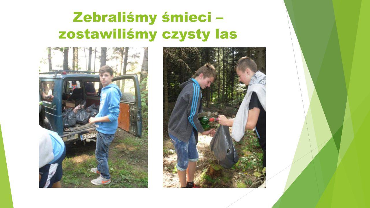 Zebraliśmy śmieci – zostawiliśmy czysty las
