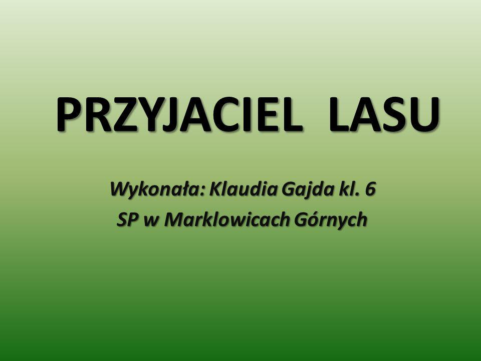 Wykonała: Klaudia Gajda kl. 6 SP w Marklowicach Górnych