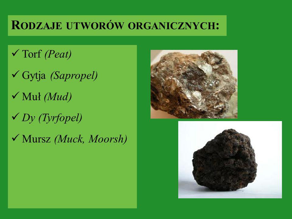 Rodzaje utworów organicznych: