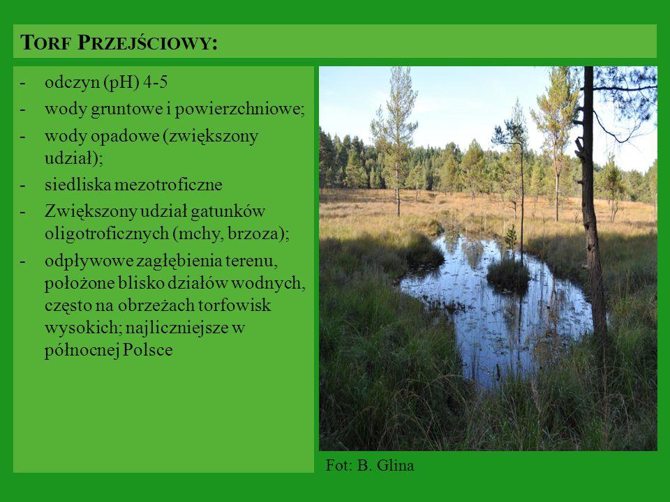 Torf Przejściowy: odczyn (pH) 4-5 wody gruntowe i powierzchniowe;