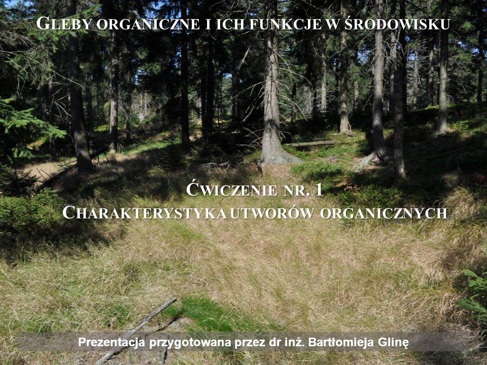 Gleby organiczne i ich funkcje w środowisku