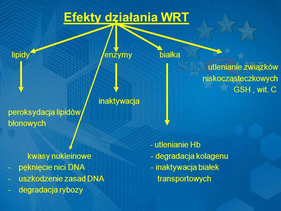 Efekty działania WRT lipidy enzymy białka utlenianie związków