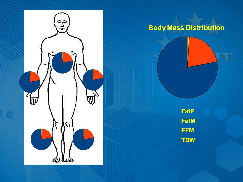 Body Mass Distribution