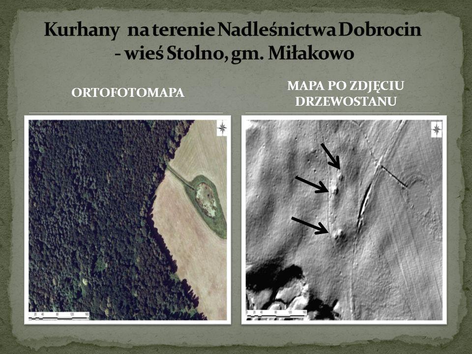 Kurhany na terenie Nadleśnictwa Dobrocin - wieś Stolno, gm. Miłakowo