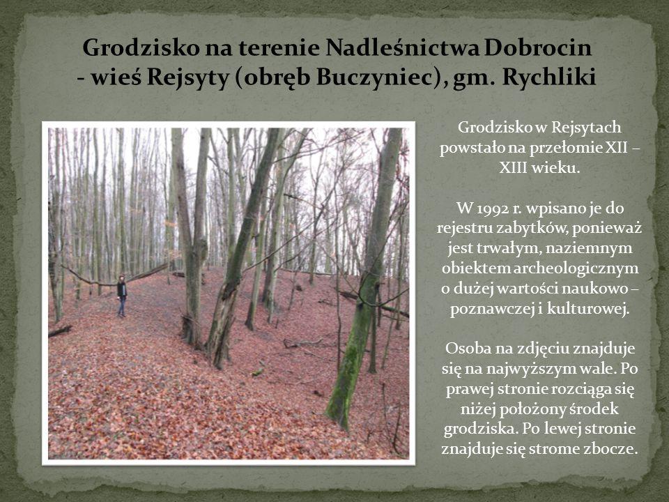 Grodzisko na terenie Nadleśnictwa Dobrocin