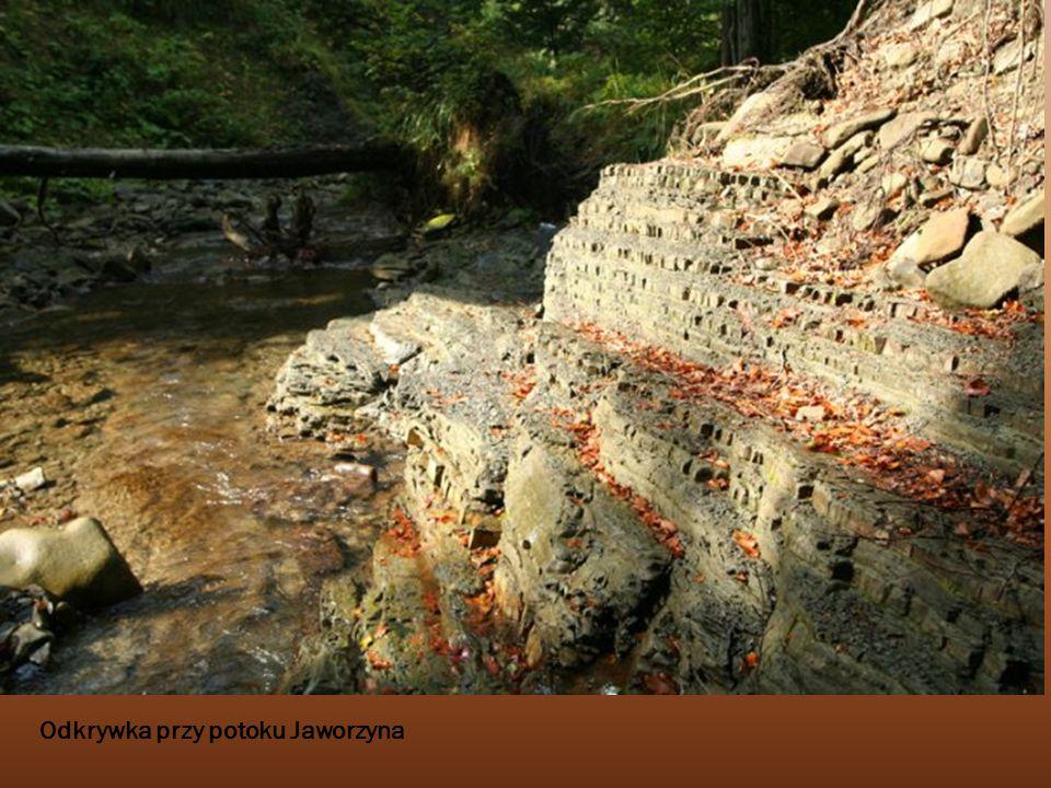 Odkrywka przy potoku Jaworzyna