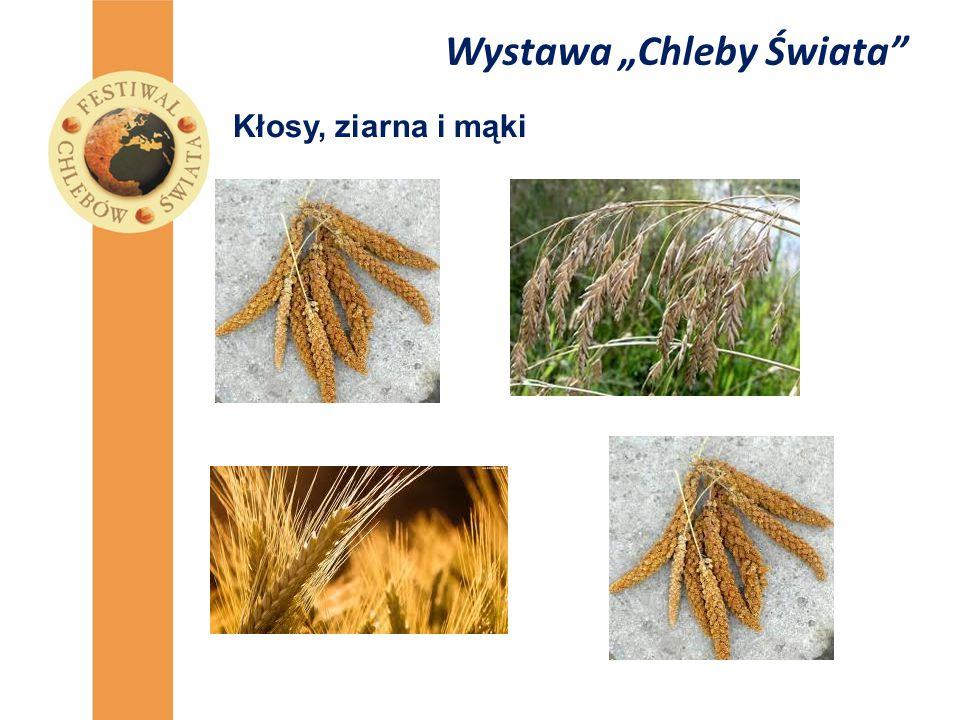 """Wystawa """"Chleby Świata"""