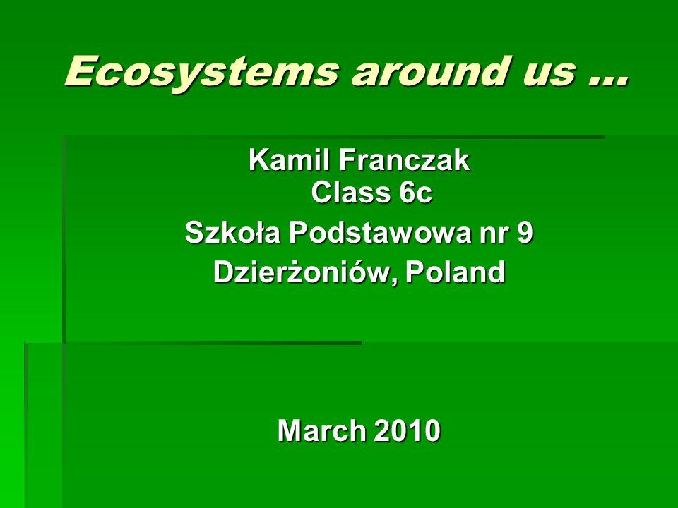 Ecosystems around us … Kamil Franczak Class 6c Szkoła Podstawowa nr 9