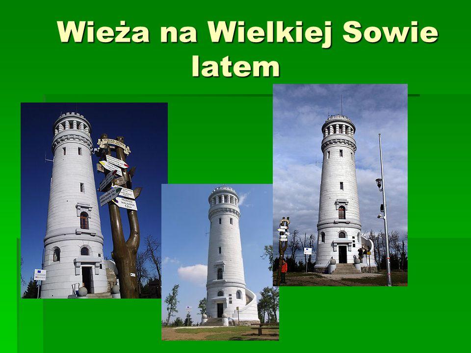 Wieża na Wielkiej Sowie latem