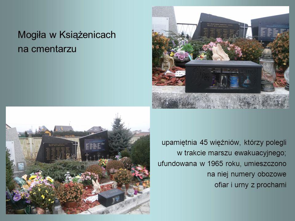 Mogiła w Książenicach na cmentarzu