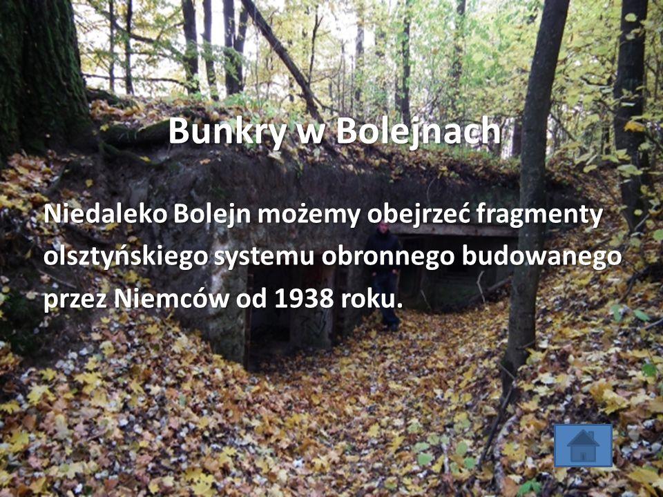 Bunkry w Bolejnach Niedaleko Bolejn możemy obejrzeć fragmenty olsztyńskiego systemu obronnego budowanego przez Niemców od 1938 roku.