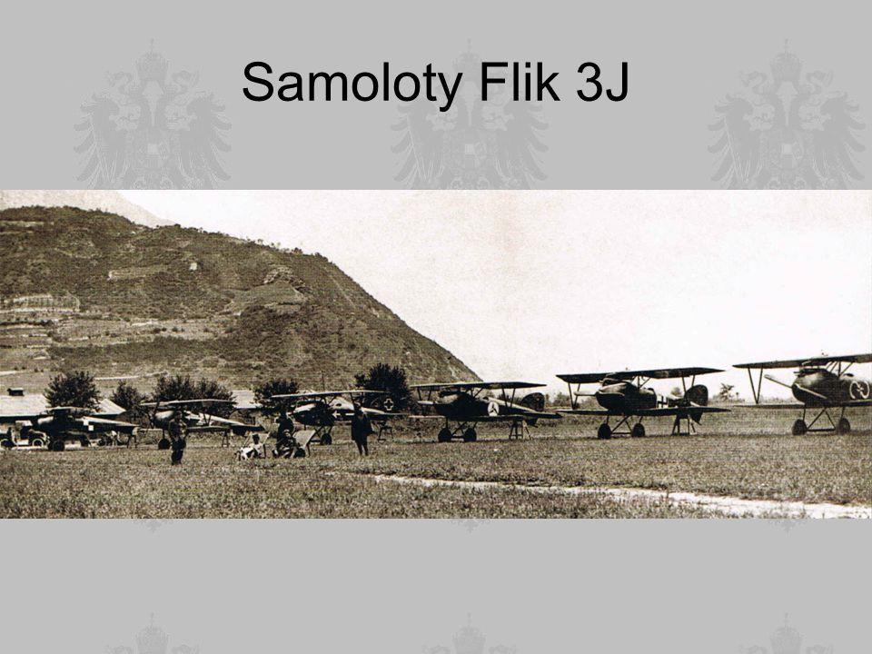 Samoloty Flik 3J