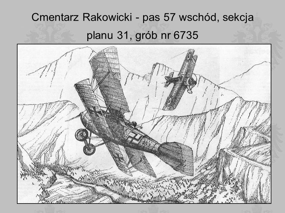 Cmentarz Rakowicki - pas 57 wschód, sekcja planu 31, grób nr 6735