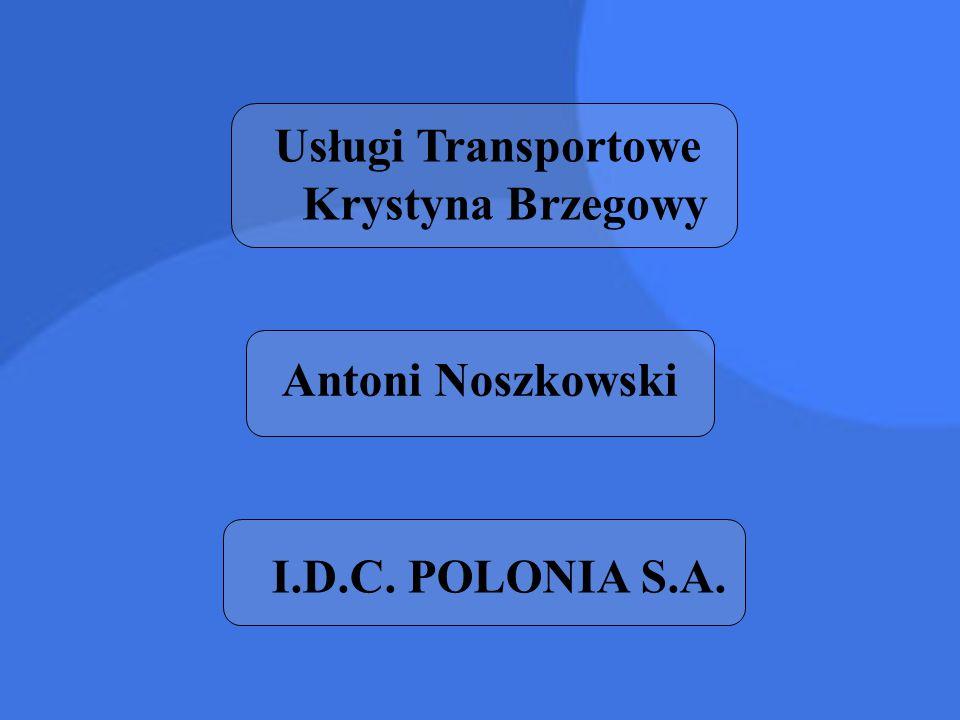 Usługi Transportowe Krystyna Brzegowy