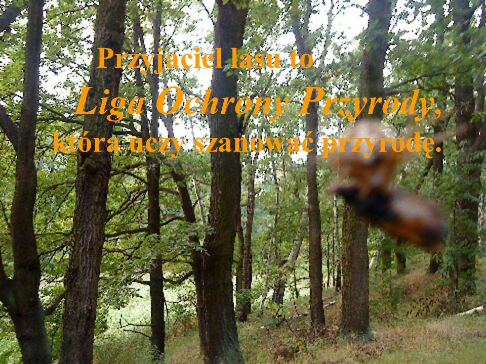 Przyjaciel lasu to Liga Ochrony Przyrody, która uczy szanować przyrodę.