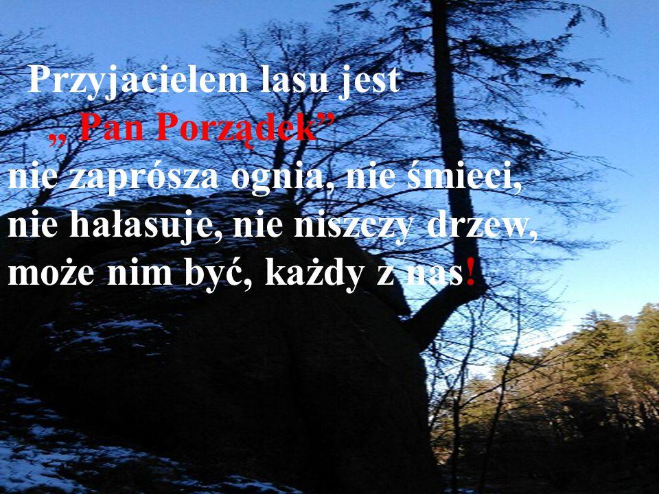"""Przyjacielem lasu jest """" Pan Porządek nie zaprósza ognia, nie śmieci,"""