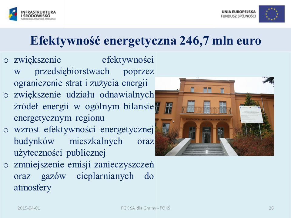 Efektywność energetyczna 246,7 mln euro